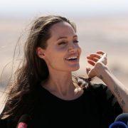 Анџелина Џоли, оружје  у рукама судова, тужилаштава и војске.