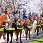 Полиција РС биће опремљена коњима
