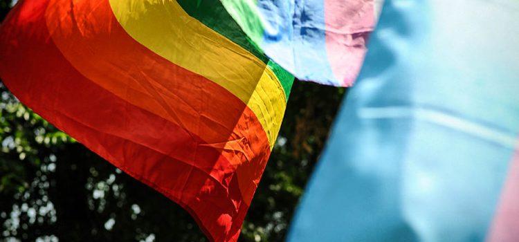 Хоће ли ФБиХ легализовати геј животне заједнице?