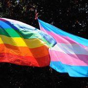 Црна Гора усвојила Закон о истополним браковима