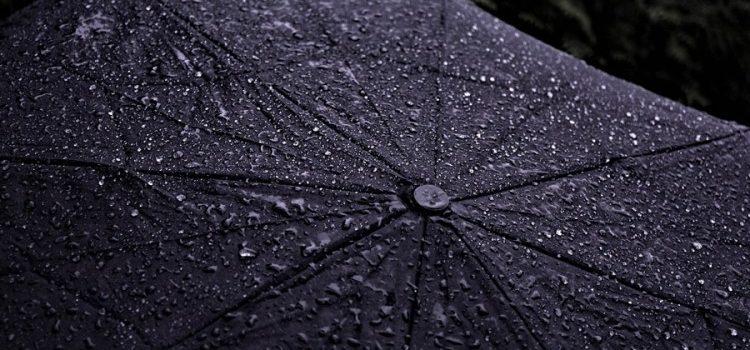 Сутра киша